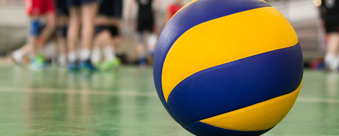 img volley